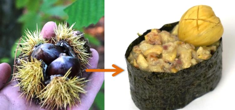 Esskastanien: Vom Wald ins Sushi!