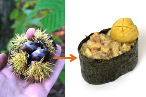 Beitragsbild Gunkanmaki Sushi mit zweierlei Esskastanien
