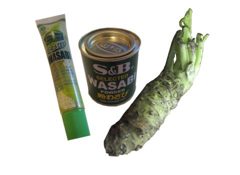 Echter Wasabi: Vergleich Wasabi aus Tube, Dose und frisch